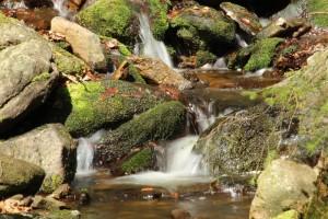 pohled ochrany přírody