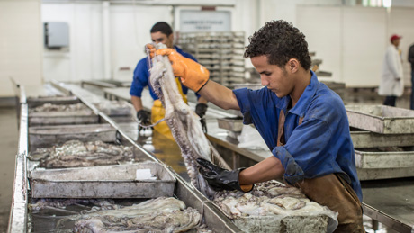 Německo podporuje Mauretánii v rybolovu